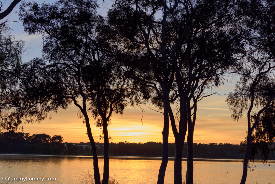 Framing the sunrise on Lake Ginninderra  NIKON D810 with 28.0-300.0 mm f/3.5-5.6 at 55mm and f/8, 1/125sec, ISO 400