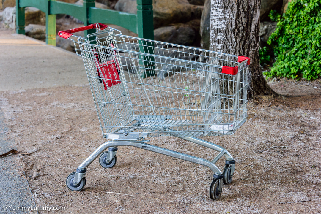 A Coles shopping trolley at John Knight Memorial Park on Lake Ginninderra  NIKON D810 with 28.0-300.0 mm f/3.5-5.6 at 82mm and f/5.6, 1/60sec, ISO 500